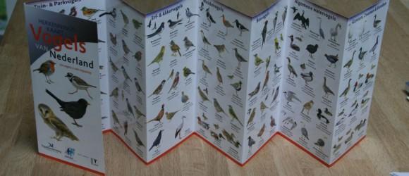 Vogelherkenningskaart