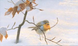 Schilderij Roodborst in de sneeuw