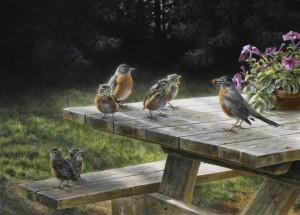 Schilderij American robins