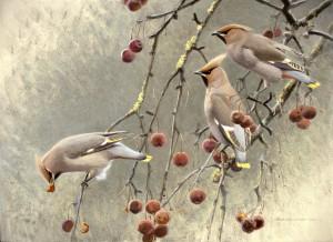 Schilderij Pestvogels