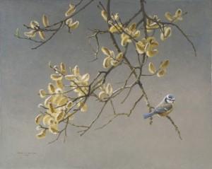 Schilderij Pimpelmees in wilg