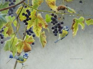 Schilderij pimpelmezen en druiven