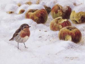 Schilderij roodborst met appels