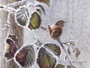 Schilderij Winterkoning