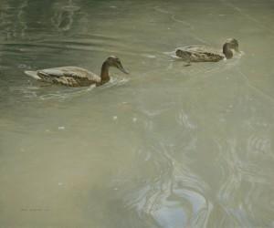 Schilderij Wilde eenden