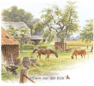 Illustratie boerenerf steenuil