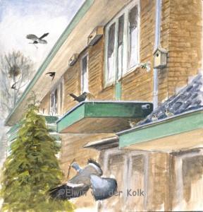 Illustratie vogels in voortuin