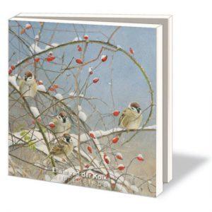 winterbirds_kaartenset