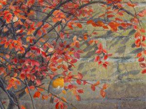 herfstkleuren-roodborst