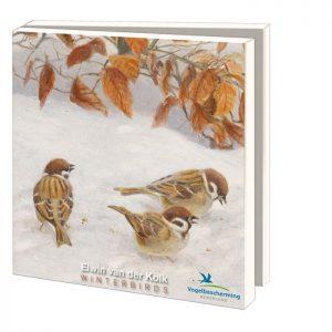 wenskaartset-winterbirds-nieuw